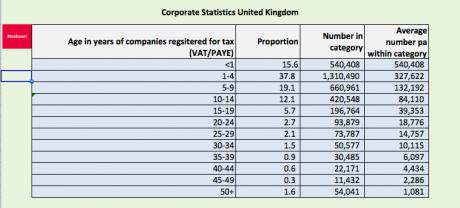 Average age of UK companies